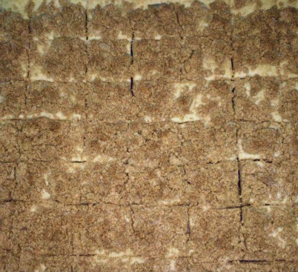 COCA DE MOLLITAS con Thermomix®
